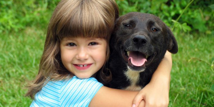 Consejos para adoptar un cachorro