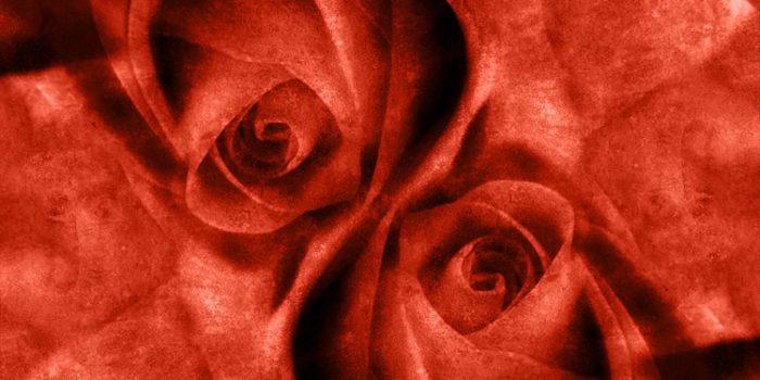 Características del color Rojo