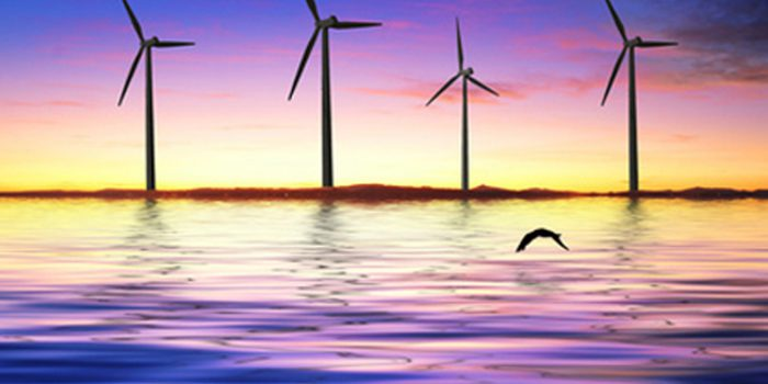 Energía eólica marina, fuente inagotable de energía