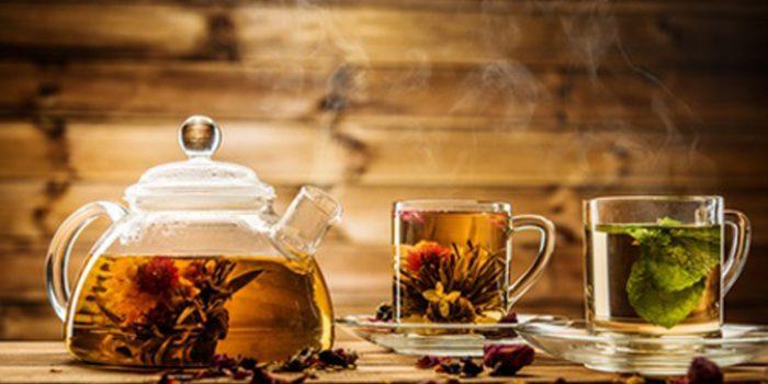Plantas para el sistema digestivo: recetas de tisanas