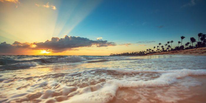 Recetas de especias del Caribe y Latinoamérica