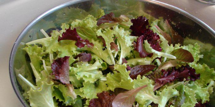 Recetas de ensaladas frías fáciles de preparar