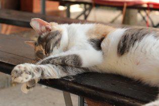 Superar cansancio