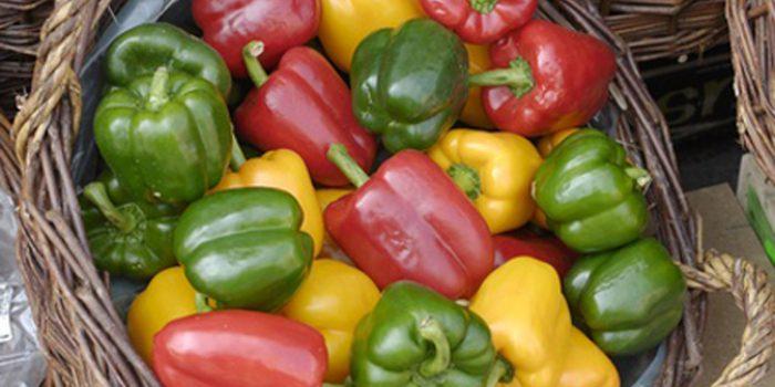 Los pimientos, nutritivos y saciantes