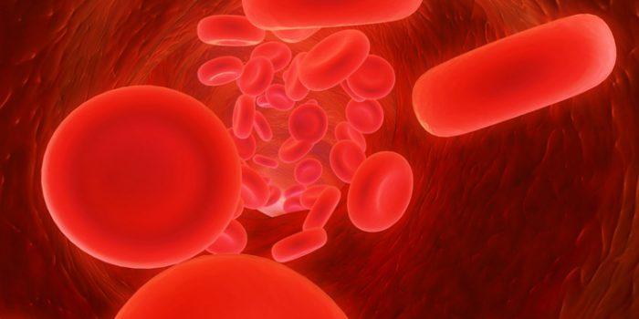 Beneficios de la vitamina B12 o Cobalamina
