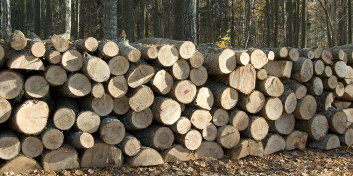Cómo mejorar la durabilidad de la madera