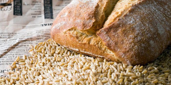 propiedades del trigo