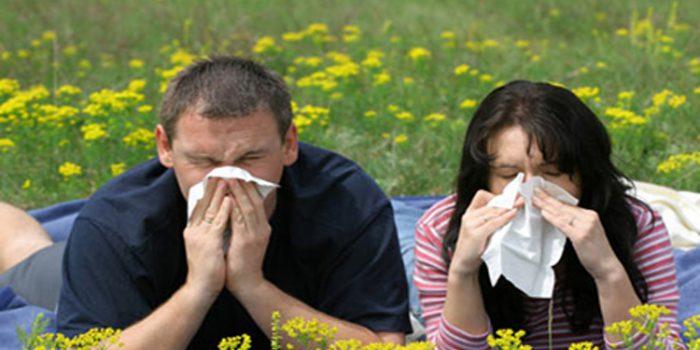 Alergia primaveral, prevención y tratamiento