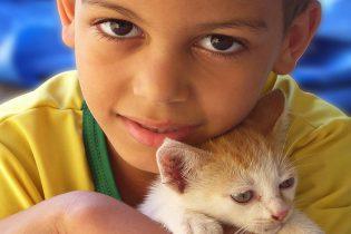 chico-con-gato