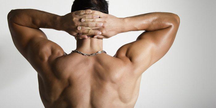 Claves para desarrollar la espalda