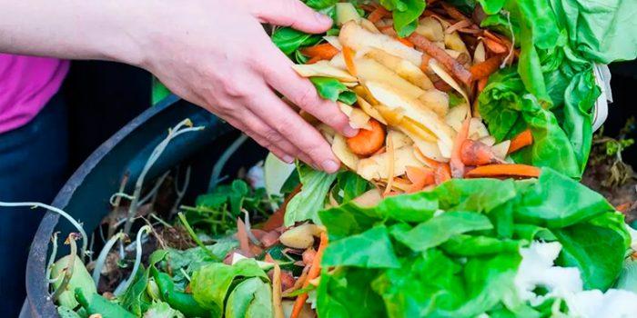 Desperdicio de alimentos: consejos para evitarlo