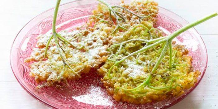 Flores de saúco: recetas para aprovechar sus beneficios