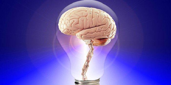 Nootrópicos para la función cognitiva