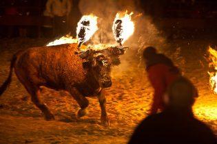 toros-embolados