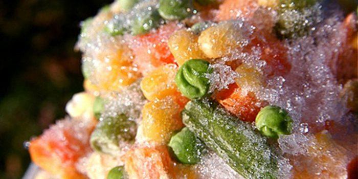 Consejos sobre cómo descongelar alimentos